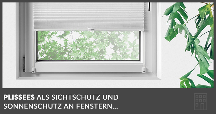 plissees-fenster